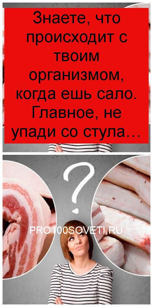 Знаете, что происходит с твоим организмом, когда ешь сало. Главное, не упади со стула 4