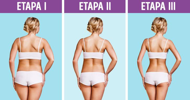 chto-takoe-metabolicheskaja-dieta-i-pochemu-ona-dejstvitelno-rabotaet-dc0b3cd-5644814