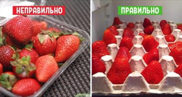 snimok-ekrana-2017-06-10-v-09-07-29-696x371-1-8277282